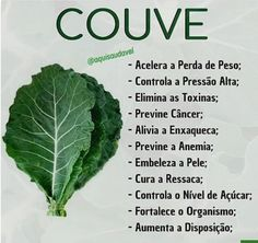 Couve - www. Kale Benefits, Dieta Online, Carbohydrates Food List, Feed Insta, Dietas Detox, Light Diet, Health Eating, No Carb Diets, Herbal Medicine