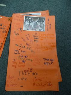 Fact and Opinion with Pictures  Use dif. pics. kids work in groups, write sentences, CCS