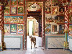 Karen Knorr - Sita's Wish, Zanana, Junha Mahal, Dungarpur @ India Song | StoryLTD