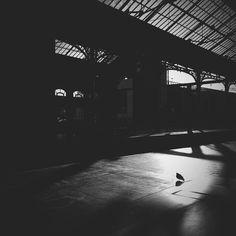 Living in her shadow by irwaneffendy