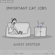 Both of my ginger cats Tigger the fiery one and Sir Lancelot spotted ghosts and acted scared- AT EMPTY AIR.
