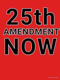 25th Amendment Now