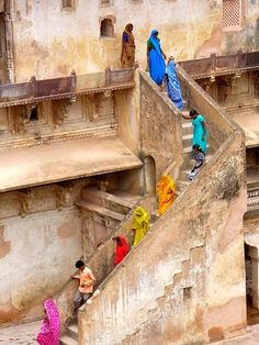 INDIA: women descending a staircase in a dazzling array of brightly colored saris.