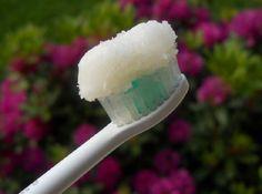 Você sabia que o coco é uma fruta que, além de possuir alto teor de fibras, ter a água rica em vitaminas e minerais, seu óleo pode ser utilizado na cozinha, no corpo, no cabelo e, nos dentes? Em pesquisa recente, cientistas testaram o óleo de coco na bactéria steptococcus mutans – responsável por causar erosão dental – e descobriram que o líquido da fruta é capaz de matar esta bactéria prejudicial aos dentes devendo, em breve, ser o ingrediente principal das pastas de dente e dos enxagues…
