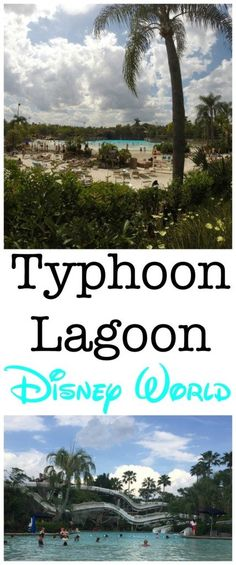 Typhoon Lagoon in incredible water park at Disney World that is fun for the whole family.