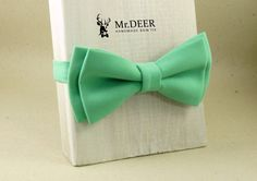 Hey, I found this really awesome Etsy listing at https://www.etsy.com/listing/400049045/mint-green-bow-tie-ready-tied-bow-tie