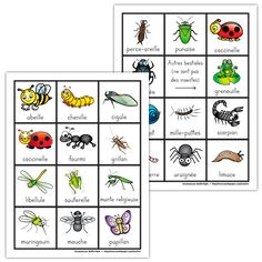 Lots of printables on the topic of insects in French. Grade 2 Science, Science Lessons, Teaching Science, Insect Crafts, Bug Crafts, Spring Activities, Book Activities, Amelie Pepin, Ontario Curriculum