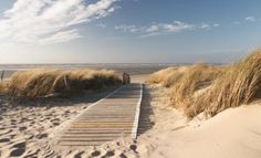 Beach-Walkway-Path-Coastal-WALL-MURAL-PHOTO-WALLPAPER-1020P