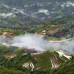 thierry bornier Member Profile -- National Geographic Your Shot