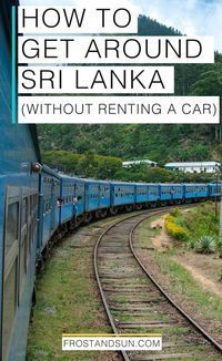 Traffic in Sri Lanka is nuts and renting a car is also a big hassle. Come check out the different modes of transportation in Sri Lanka. They're super affordable!