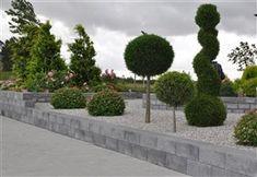Inspiration - Murar Sidewalk, Plants, Inspiration, Gardens, Garden Decorations, Garden Landscaping, Walkway, Biblical Inspiration, Flora