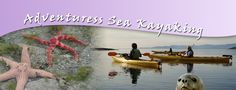 Kayaking Vancouver Island, Kayak with Orca Whales, Sea Kayak the West Coast, Orcas, Eagles & Seals | Adventuress Sea Kayaking, Parksville, Nanaimo, Vancouver Island, BC, Canada