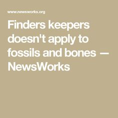 Finders keepers doesn't apply to fossils and bones — NewsWorks