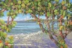Giclee prints of Carol McArdle art.
