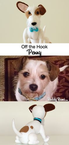 Off the Hook: Amigurumi Penny Amigurumi Russel Terrier Penny. Jack Russell Terrier, Plush Animals, More Cute, Terrier Mix, Amigurumi Doll, Hello Everyone, Corgi, Crochet Patterns, Kawaii
