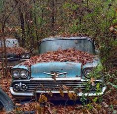 Slipping into nature. #Classic #Chrome #Style #History #Beauty #RustinPeace