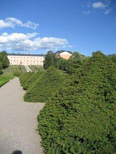 Botaniska trädgården, Uppsala, 2007 - 2 - Category:Topiary - Wikimedia Commons
