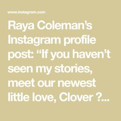 "Raya Coleman's Instagram profile post: ""If you haven't seen my stories, meet our newest little love, Clover ☘️ sweetest most snuggly playful little girl. Our family feels so…"""