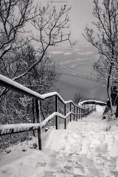 On the Gellért Hill in winter, Budapest, Hungary