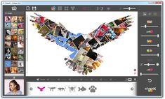 Free Apps, Desktop Screenshot, Collage, Windows, Animals, Art, Art Background, Collages, Animales