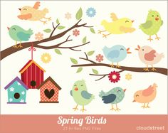 buy 2 get 1 free Spring Birds Clipart for personal and commercial use ( Cute birds clip art ) INSTANT DOWNLOAD