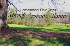 Spring Homeschool Field Trips Around Atlanta - don't miss 'buy one get one' Museum Week!