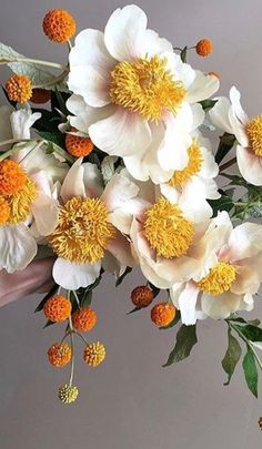 Little Flowers, My Flower, Beautiful Flowers, Botanical Flowers, Flowers Nature, Lily Garden, Paper Flowers, Floral Arrangements, Wedding Flowers