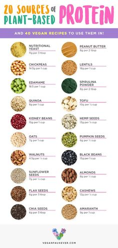 Vegan protein sources are cheap, versatile, and delicious. But what's the best way to prepare them? If you've ever wondered how vegans get protein, check out this list of vegan protein sources. All plants have protein, but these are the best ones! Plant Based Diet Meals, Plant Based Nutrition, Vegan Nutrition, Plant Based Eating, Plant Based Protein, Plant Based Recipes, Health And Nutrition, Plant Based Foods List, Nutrition Tips