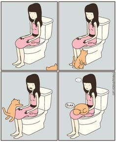 There's no privacy with a cat!