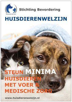 Steun MINIMA HUISDIEREN met voer & medische zorg!