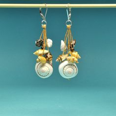 Nautilus Spiral Shell with Seashells and Coconut by Bungalow42