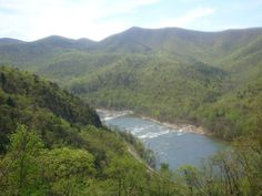 Lynchburg, Virginia. Find old wills and Virginia families and genealogies on line www.virginiapioneers.net