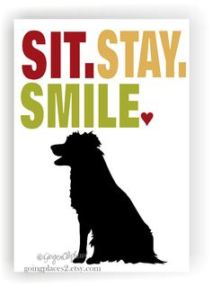 Border Collie Art Print Wall Decor Sit Stay Smile by GoingPlaces2, $14.00
