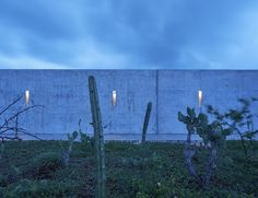 Gallery of Wabi House / Tadao Ando Architect and Associates - 15