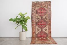 SAHI 3.5x10 Hand Knotted Persian Wool Runner by HomesteadSeattle