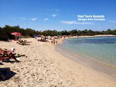 oasi torre guaceto at 15 km Beach Shower, Italian Style, Jacuzzi, Books Online, Swimming Pools, Romantic, Park, Water, Outdoor