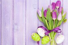 easter spring flowers tulips eggs pastel delicate easter spring