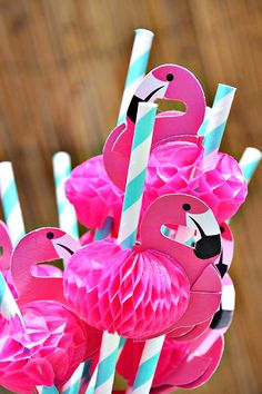 Bright & Girly Flamingo Pool Party
