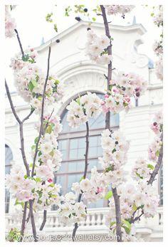 "Cherry Blossoms in White, Paris - April in Paris, white, pink, pastel - 8"" x 12"" Original Signed Fine Art Photograph. $30.00, via Etsy."
