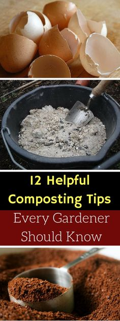 12 Helpful Composting Tips Every Gardener Should Know