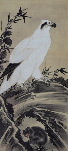 白鷲と猿 (Monkey and white eagle) by Kawanabe Kyōsai.( 河鍋暁斎)