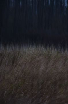 Landscape photography, dark, abstract