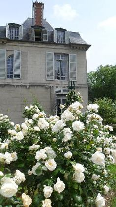 Chateau de Malmaison: Josephine loved her roses.