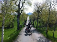 Easy family bike ride on Zimmerberg just south of Zurich.