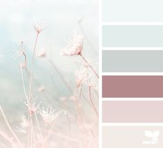 { color nature } image via: @lisaridgelyphotography