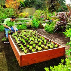 Raised garden bed planting box plans