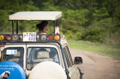 Safaris en Tanzanie: trucs et astuces (Detour Local) -> Jeep typique où il est facile et agréable de prendre des photos www.detourlocal.com/safaris-en-tanzanie/