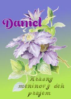 21.7 meninové priania Daniel Names, Plants, Author, Hipster Stuff, Plant, Planets
