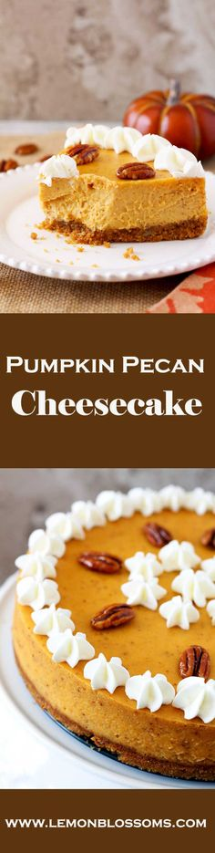 An amazing combination of creamy pumpkin spiced cheesecake with a rich graham cracker and pecan crust, this Pumpkin Pecan Cheesecake combines all the fall flavors into one delicious and super creamy bite!