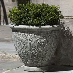 You'll love the Phaedra Cast Stone Pot Planter at Joss & Main - With Great Deals on all products and Free Shipping on most stuff, even the big stuff.